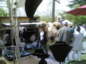 tieffliegende Kamele auf Türkheimer Handwerkermarkt